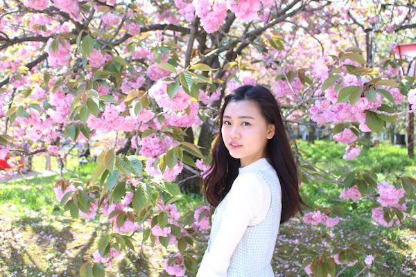 【影相勝地】廣島必去櫻花展 2016