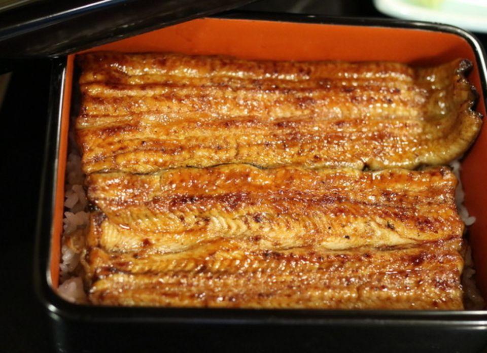 日本土用丑日食鰻魚