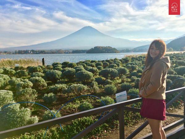 Like Japan 山梨Plan 7 富士山打卡最佳位置 河口湖自然生活館