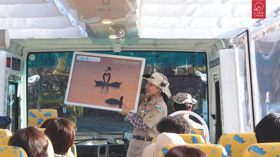 Like Japan 山梨Plan 11 山中湖 水陸兩用巴士 上山下海好刺激