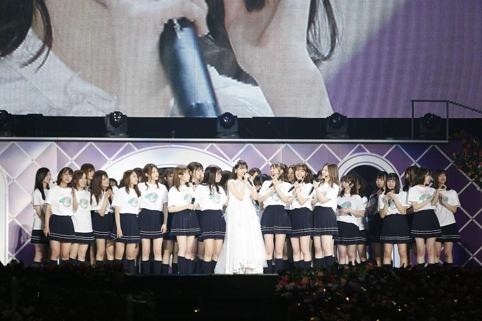 乃木坂46西野七瀬七周年演唱會全勤 四天20萬人177首歌曲畢業演出有終之美