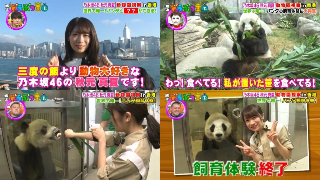 香港成為最人氣外遊地之一!日本人十連休黃金週出走 / 日本在香港