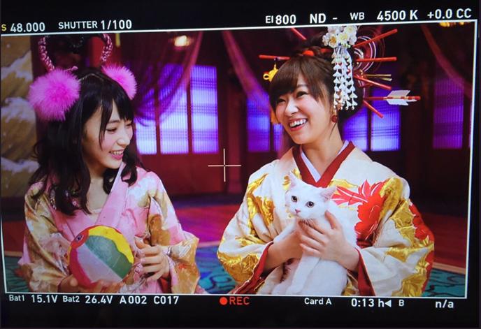 我在AKB48指原莉乃與宮脇咲良身上看見「日商育才」的縮影(上)