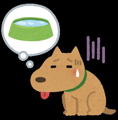 炎炎夏日 寵物也會中暑!日本警視廳災害對策課 貓狗中暑處理小教學