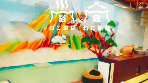 大阪最強浴場風新景點 貓貓+酒店+Cafe 讓各位貓奴與貓舒緩身心
