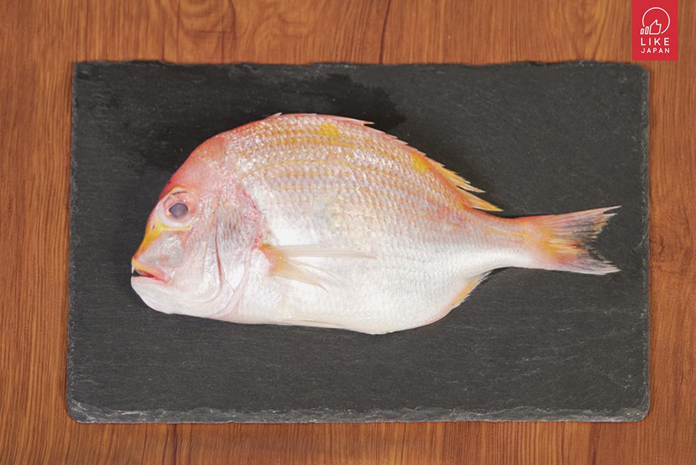 除了三文魚之外,你不可不知道的日本營養海產! 以後到壽司店就決定點你們了~