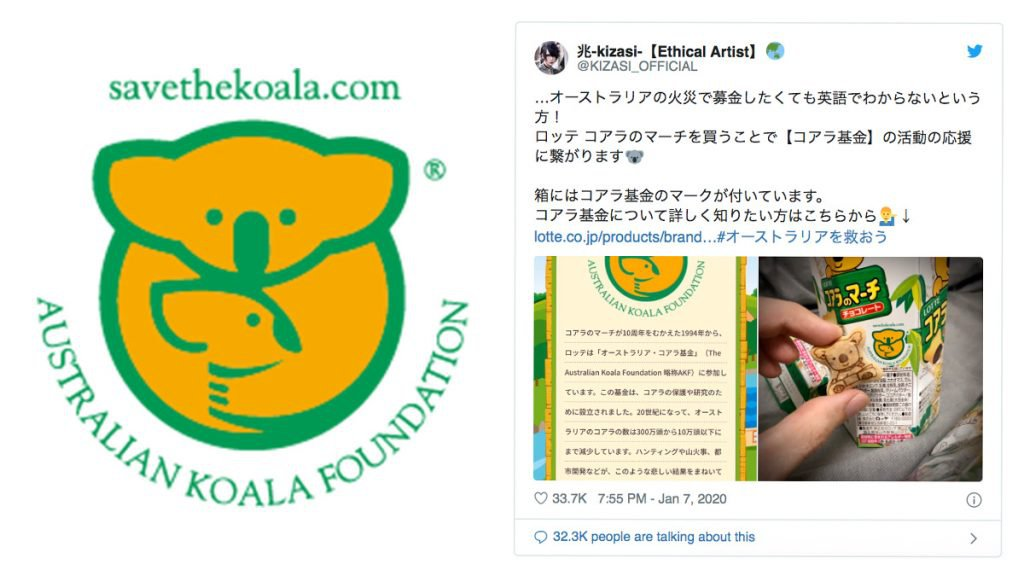 日本網上熱話!救救澳洲樹熊 買樂天熊仔餅 幫忙定期捐款到澳洲的樹熊基金