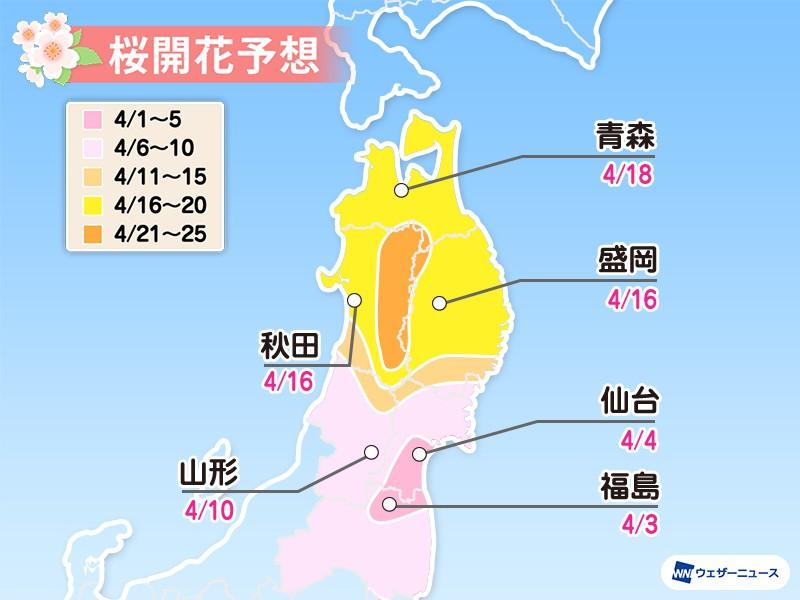 2020日本櫻花開花預測  北日本篇 北海道 東北