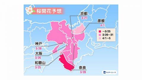 2020日本櫻花開花預測 西日本篇 大阪 京都 福岡 熊本