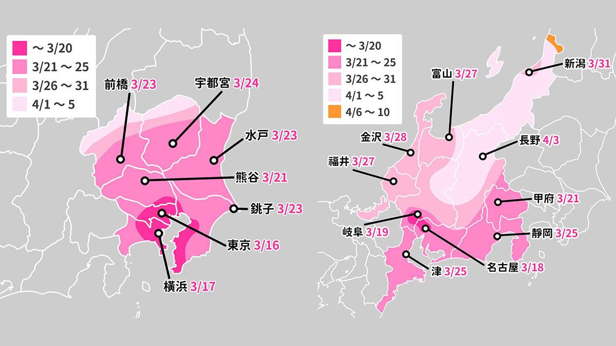 2020日本櫻花開花預測 關東+中部篇 東京 名古屋