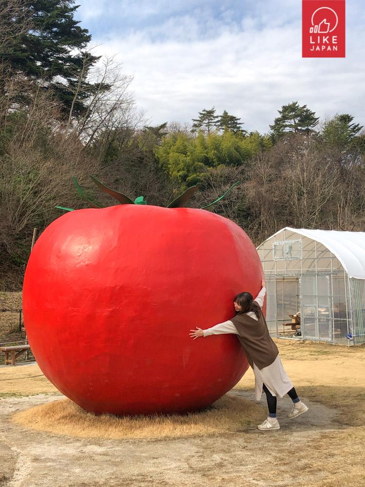 福島吃貨之旅!香甜草莓.番茄.冬菇 | 美味天上米.福島牛