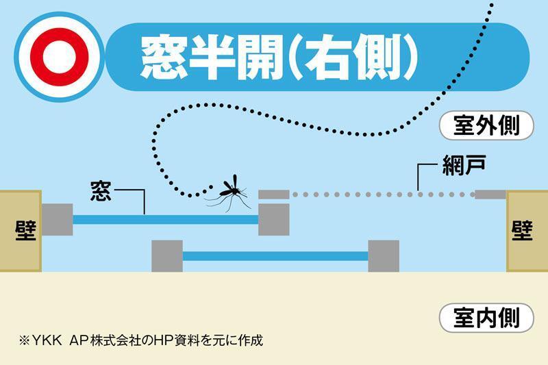 明明拉了紗窗 還是有蚊子?日本媒體教配合紗窗的「防蚊開窗法」